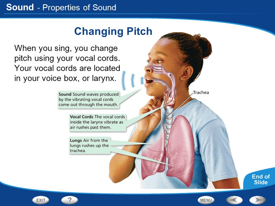 Changing Pitch - Properties of Sound