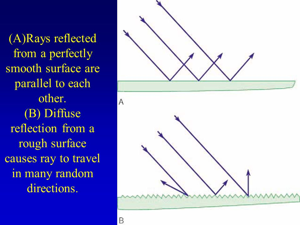 (A)Rays reflected from a perfectly smooth surface are parallel to each other.