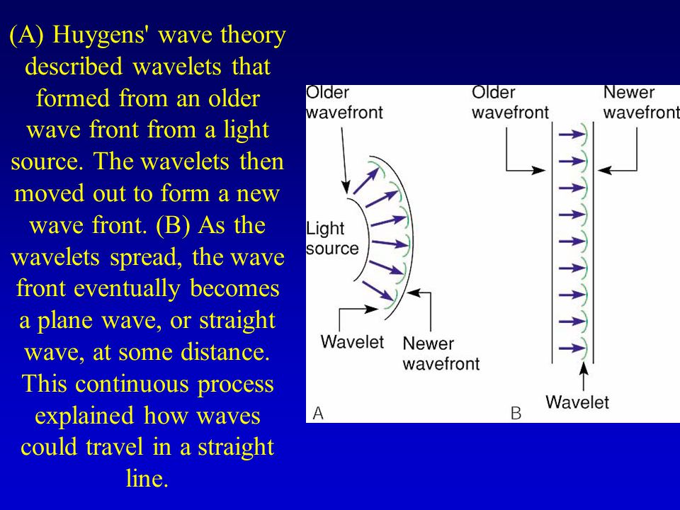 (A) Huygens wave theory described wavelets that formed from an older wave front from a light source.