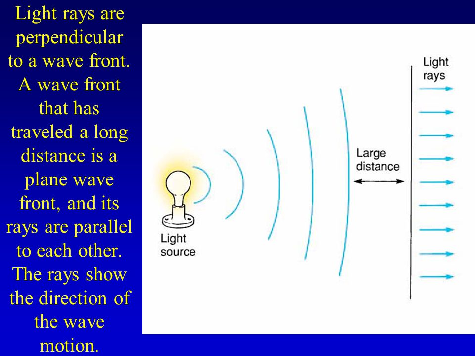 Light rays are perpendicular to a wave front