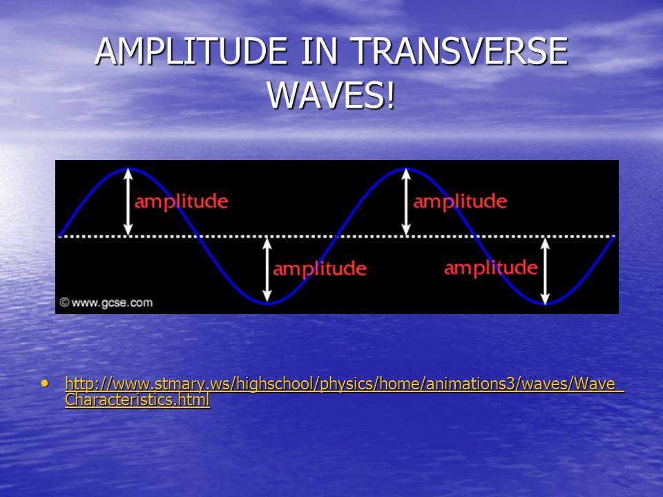 AMPLITUDE IN TRANSVERSE WAVES!