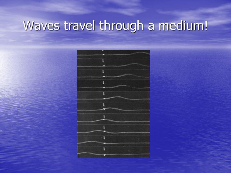 Waves travel through a medium!