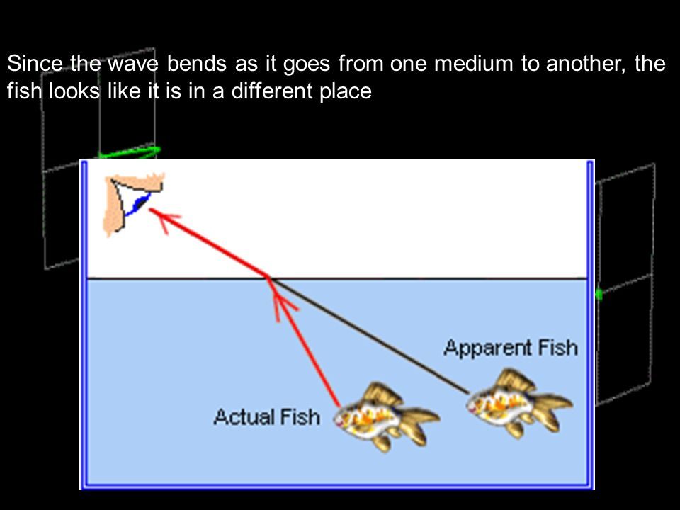 Since the wave bends as it goes from one medium to another, the fish looks like it is in a different place