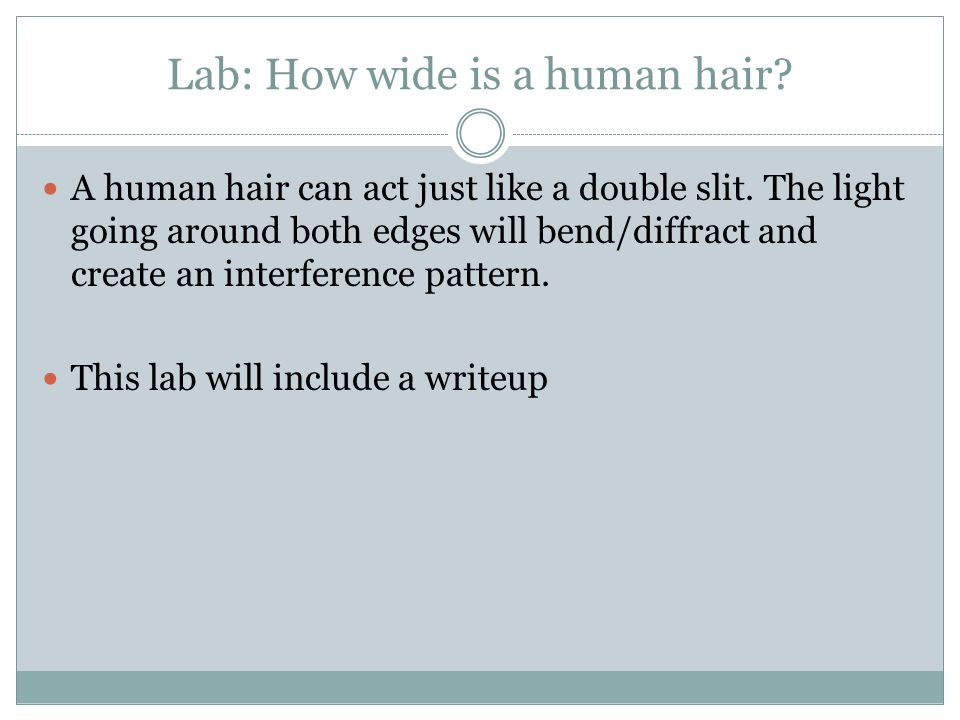 Lab: How wide is a human hair