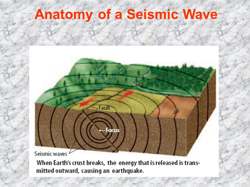 Anatomy of a Seismic Wave