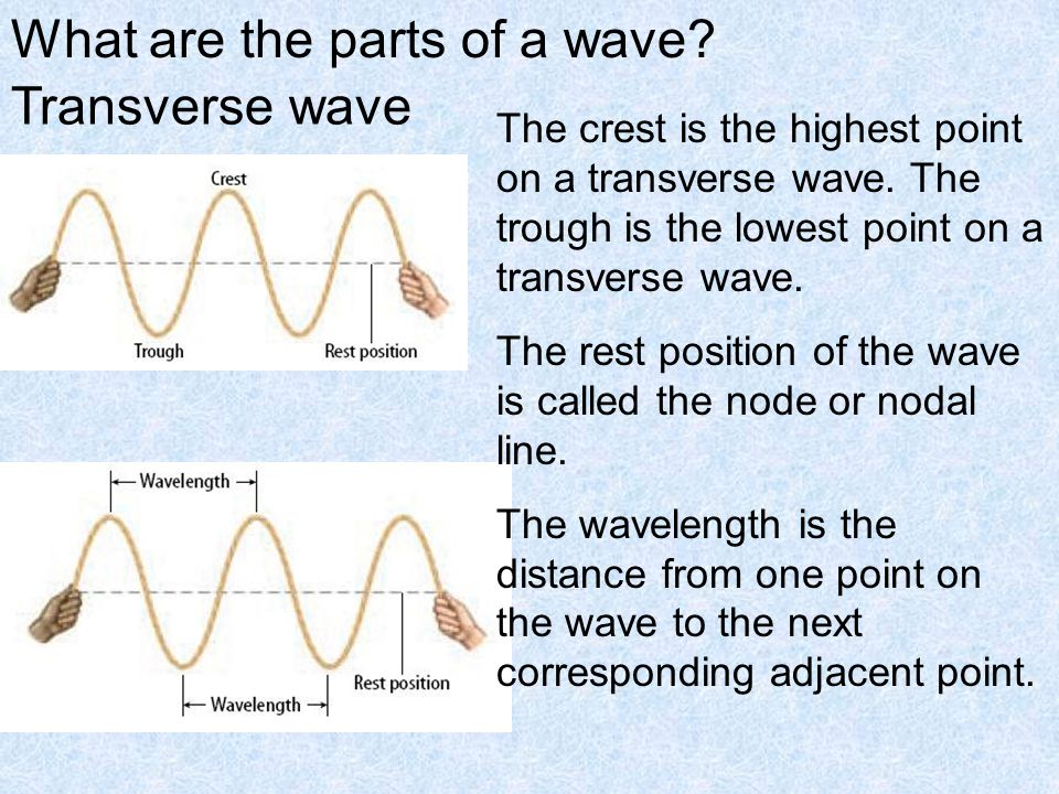 What are the parts of a wave Transverse wave