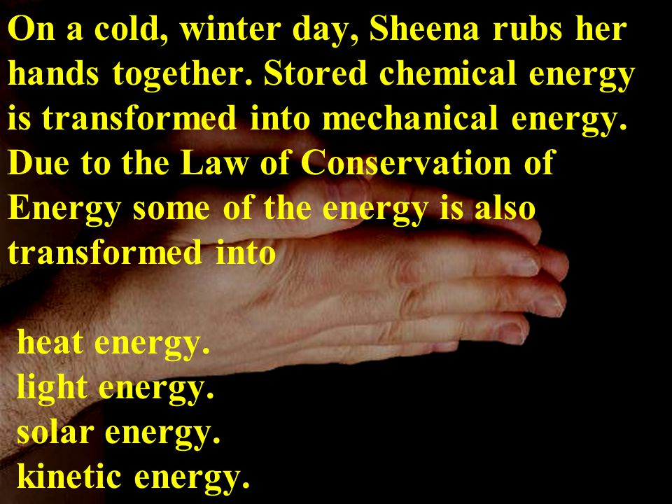 On a cold, winter day, Sheena rubs her hands together