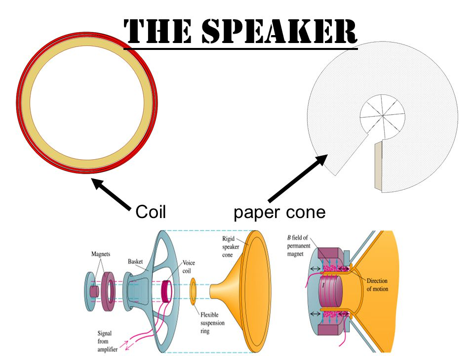 The Speaker Coil paper cone