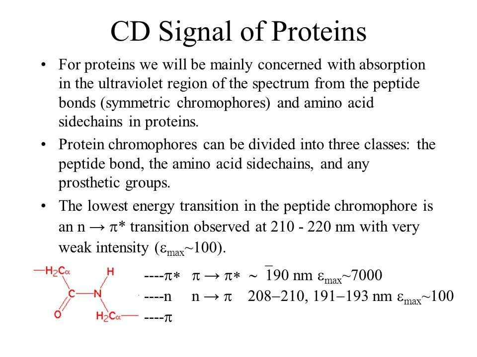 CD Signal of Proteins