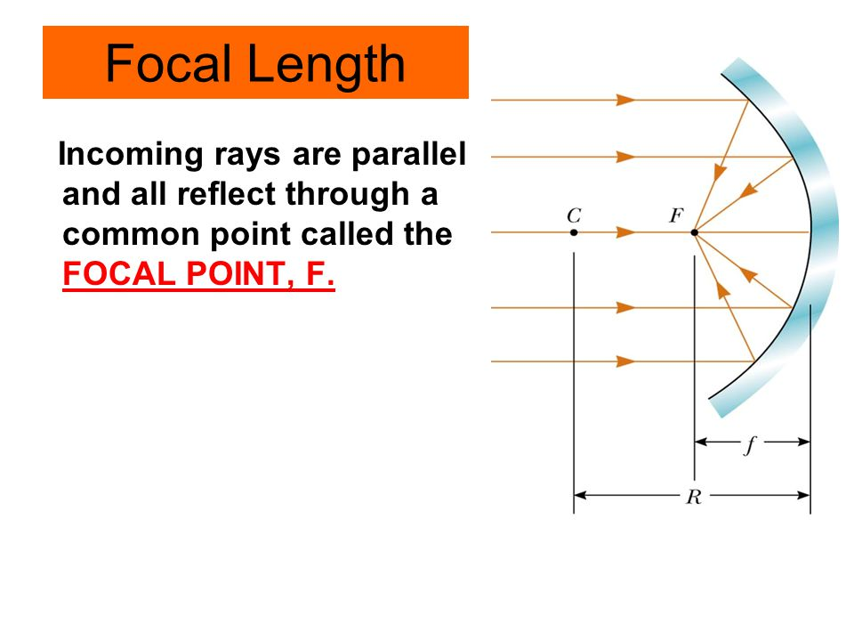 Focal Length Incoming rays are parallel and all reflect through a common point called the FOCAL POINT, F.