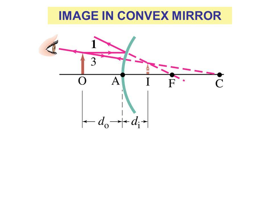 IMAGE IN CONVEX MIRROR
