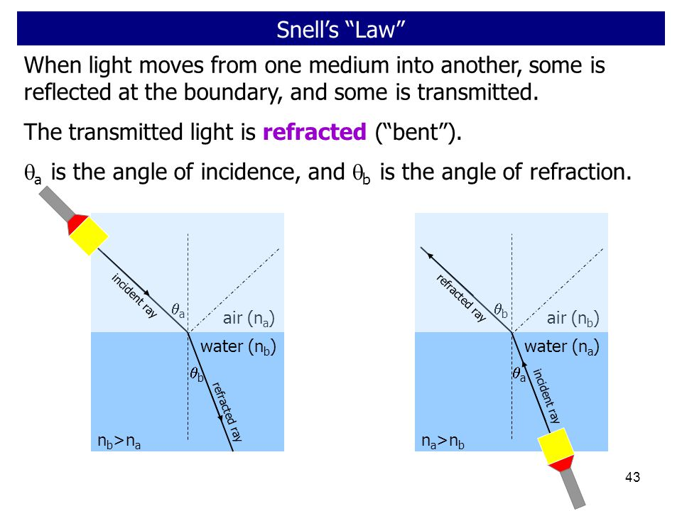 The transmitted light is refracted ( bent ).