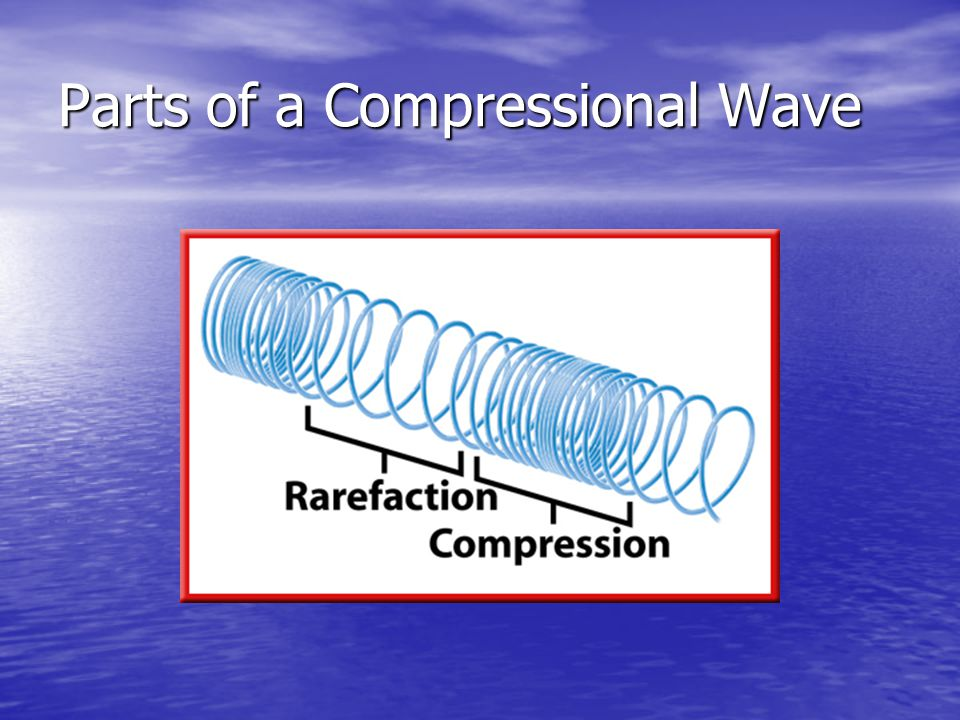 Parts of a Compressional Wave