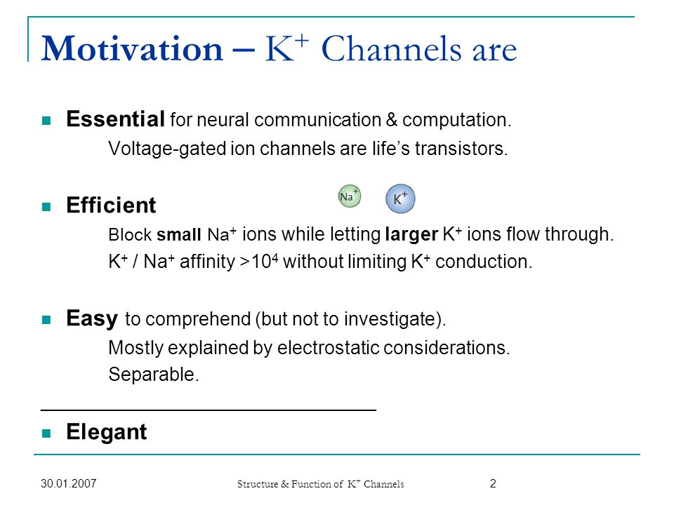 Motivation – K+ Channels are