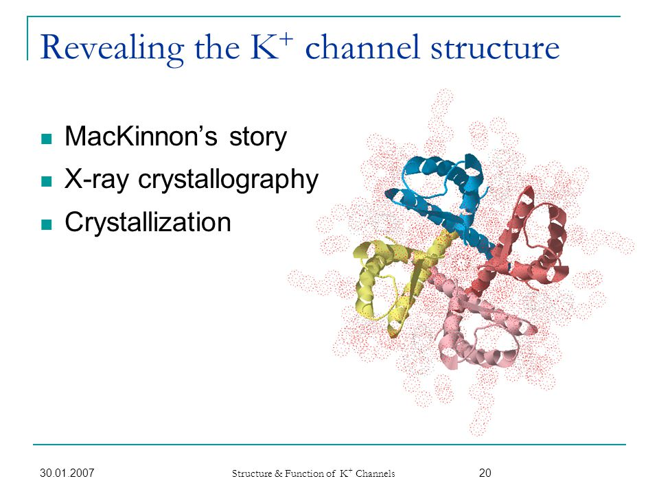 Revealing the K+ channel structure