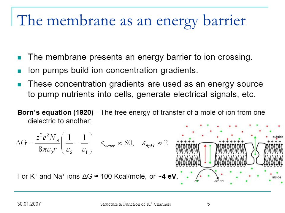 The membrane as an energy barrier