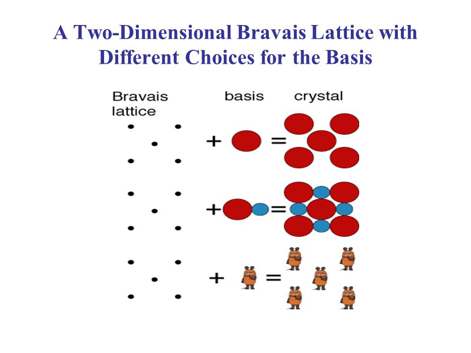 A Two-Dimensional Bravais Lattice with Different Choices for the Basis