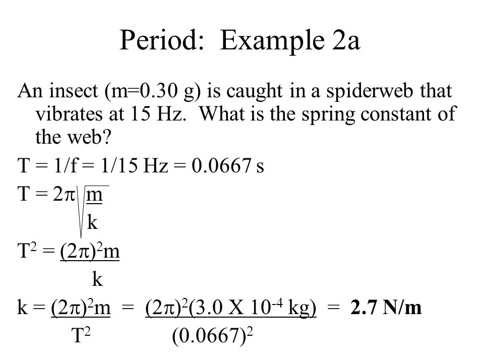 Period: Example 2a An insect (m=0.30 g) is caught in a spiderweb that vibrates at 15 Hz. What is the spring constant of the web