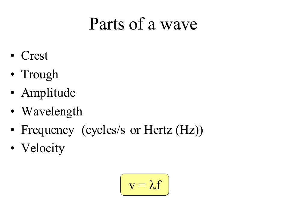 Parts of a wave Crest Trough Amplitude Wavelength