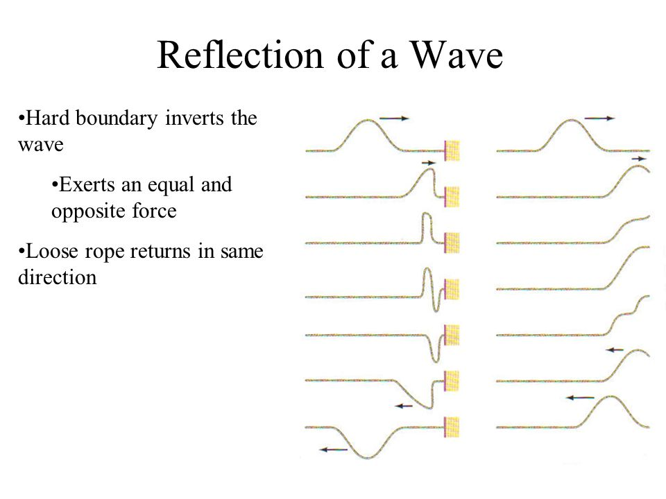 Reflection of a Wave Hard boundary inverts the wave