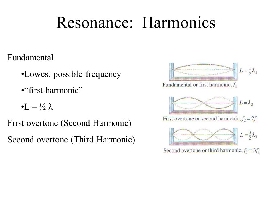 Resonance: Harmonics Fundamental Lowest possible frequency