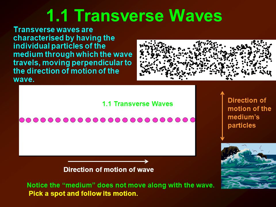 Direction of motion of wave