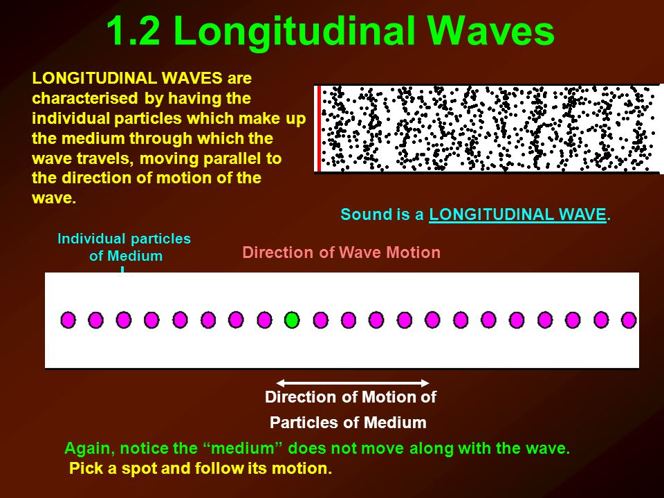 1.2 Longitudinal Waves