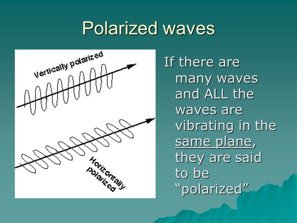 Polarized waves If there are many waves and ALL the waves are vibrating in the same plane, they are said to be polarized
