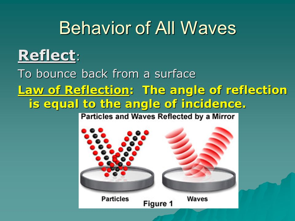 Behavior of All Waves Reflect: To bounce back from a surface