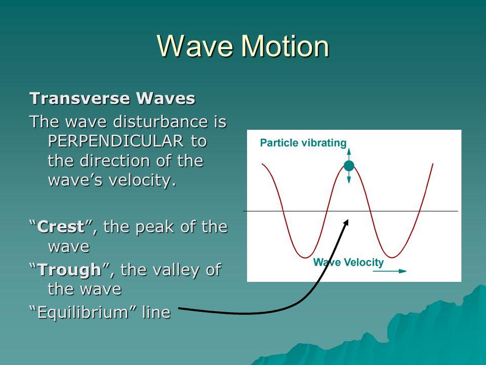 Wave Motion Transverse Waves