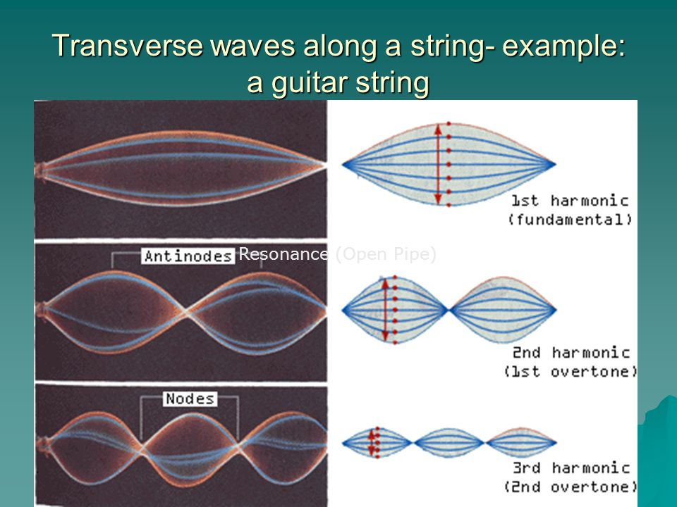 Transverse waves along a string- example: a guitar string