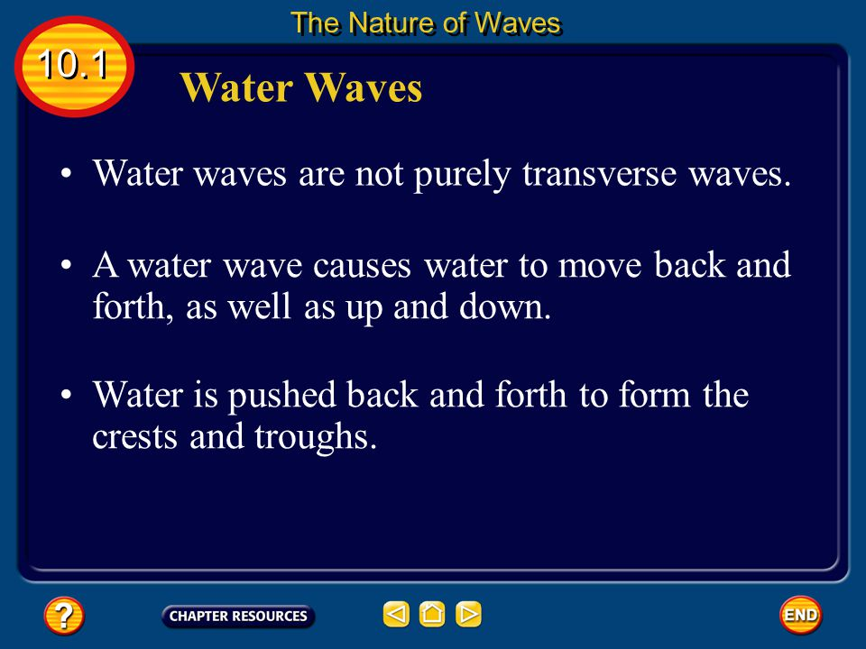 Water Waves 10.1 Water waves are not purely transverse waves.