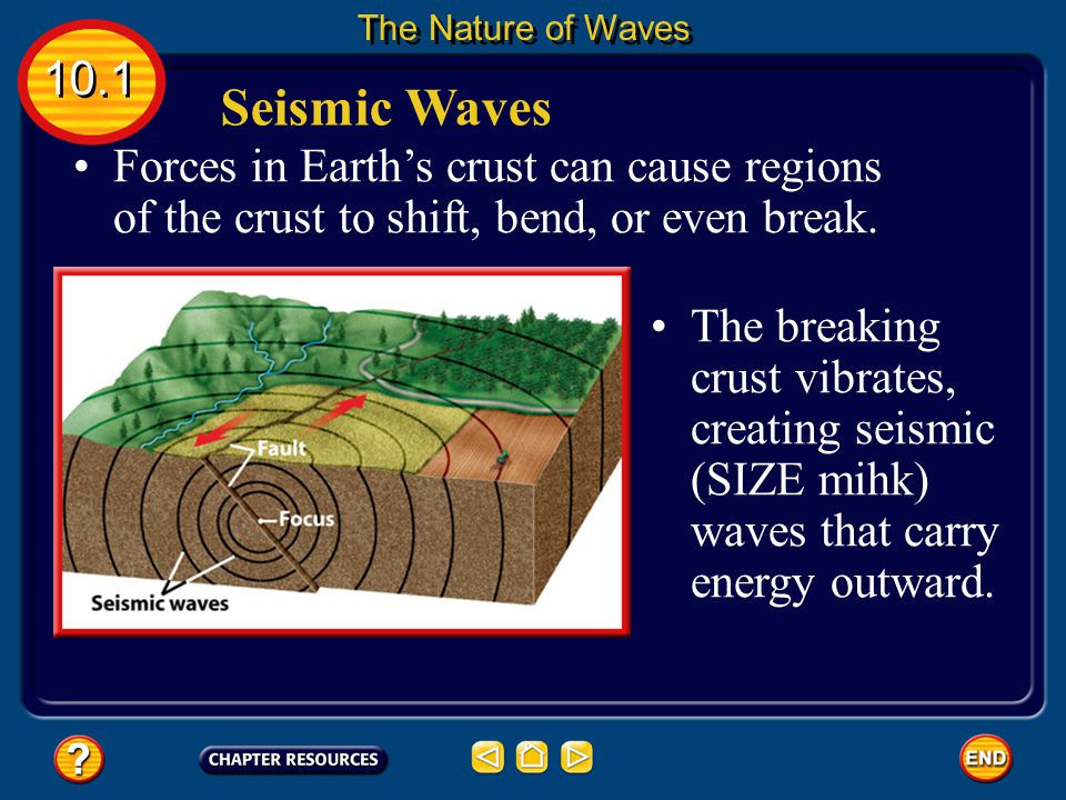The Nature of Waves 10.1. Seismic Waves. Forces in Earth's crust can cause regions of the crust to shift, bend, or even break.