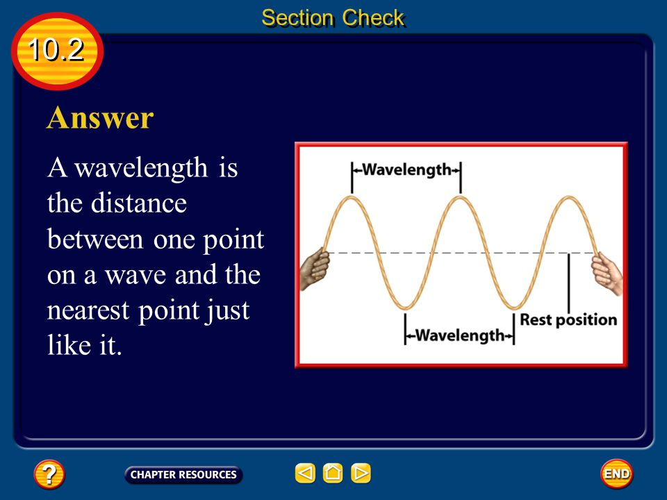 Section Check 10.2. Answer.
