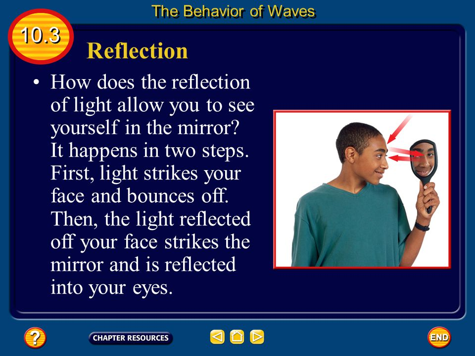 The Behavior of Waves 10.3. Reflection.