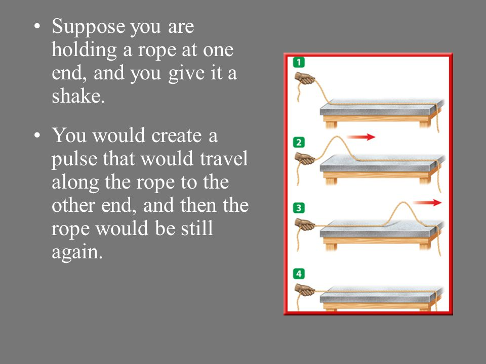 Suppose you are holding a rope at one end, and you give it a shake.