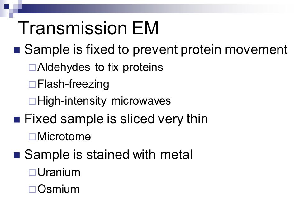 Transmission EM Sample is fixed to prevent protein movement