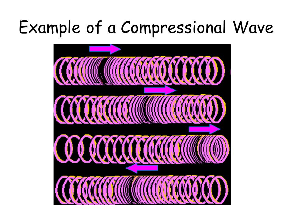 Example of a Compressional Wave