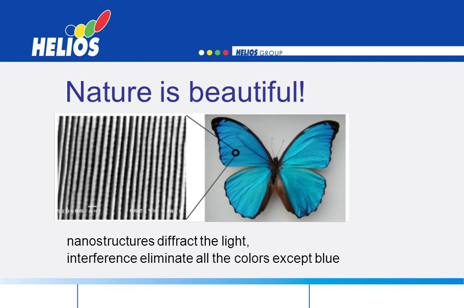 Nature is beautiful! nanostructures diffract the light,