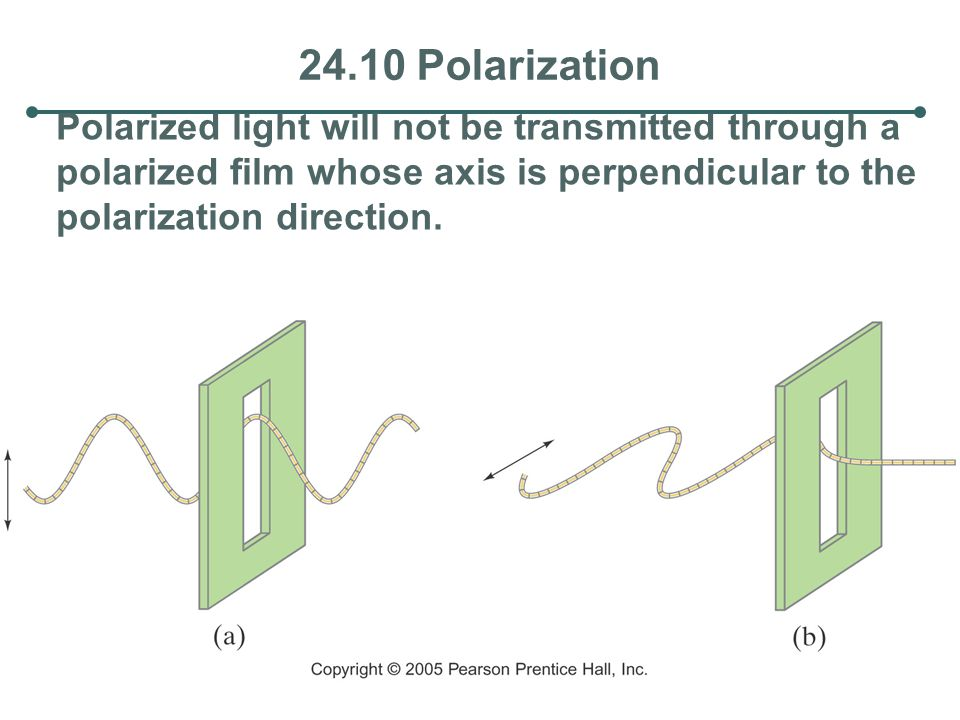 24.10 Polarization Polarized light will not be transmitted through a polarized film whose axis is perpendicular to the polarization direction.