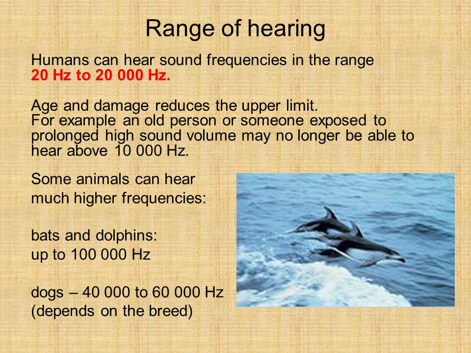 Range of hearing Humans can hear sound frequencies in the range
