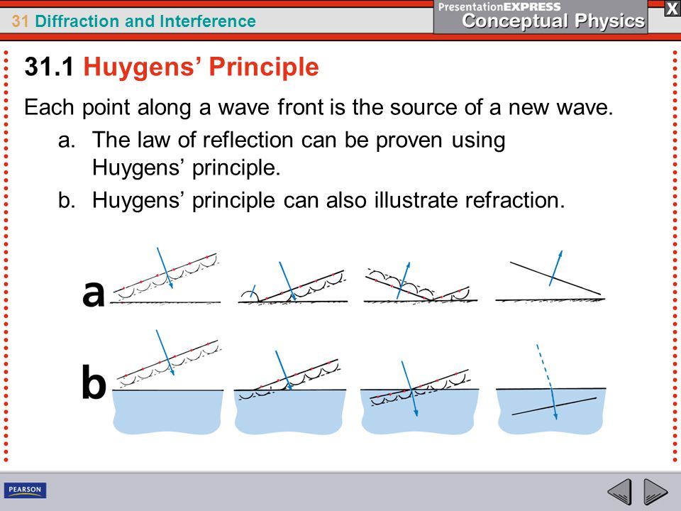 31.1 Huygens' Principle Each point along a wave front is the source of a new wave. The law of reflection can be proven using Huygens' principle.