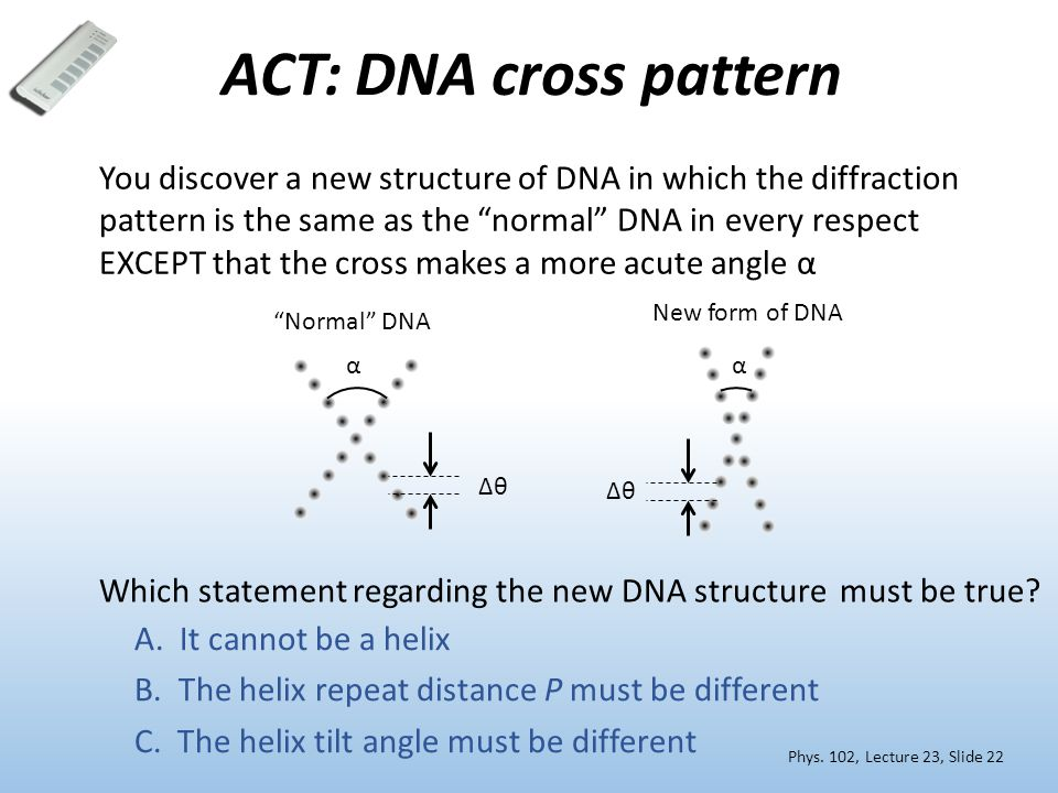 ACT: DNA cross pattern