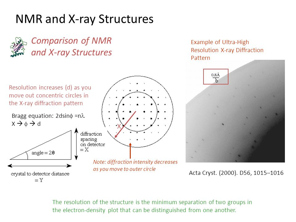 NMR and X-ray Structures