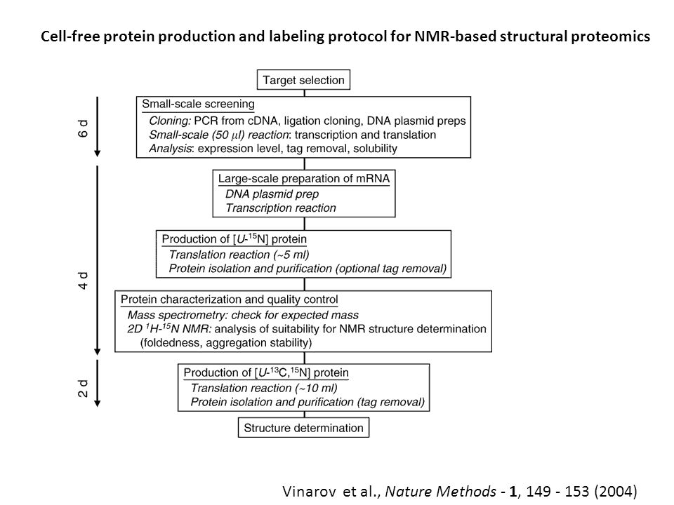 Cell-free protein production and labeling protocol for NMR-based structural proteomics