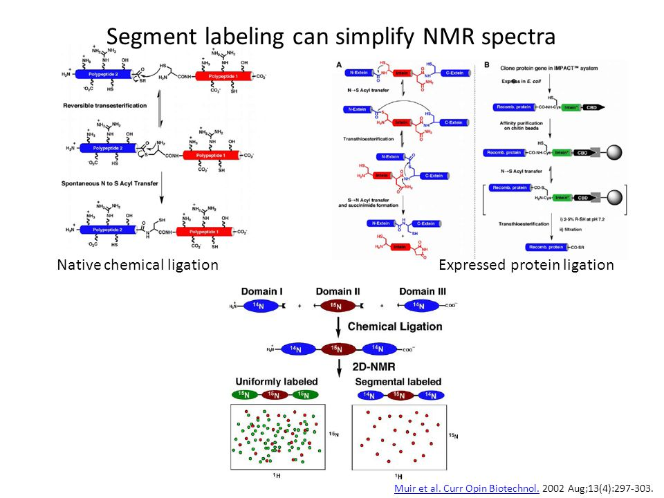 Segment labeling can simplify NMR spectra