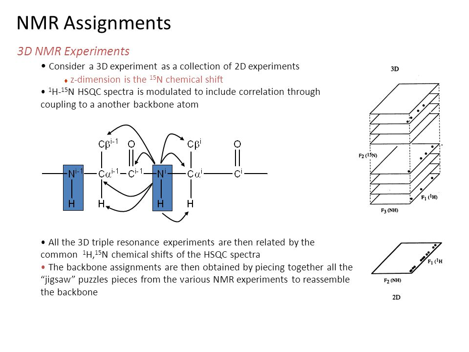 NMR Assignments 3D NMR Experiments