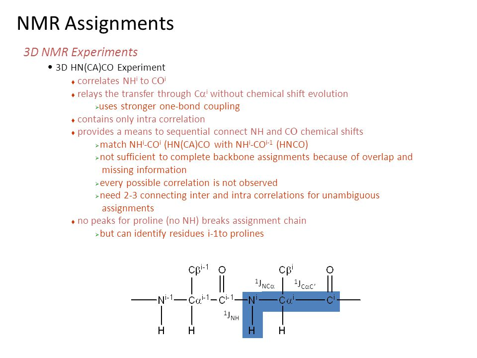 NMR Assignments 3D NMR Experiments 3D HN(CA)CO Experiment
