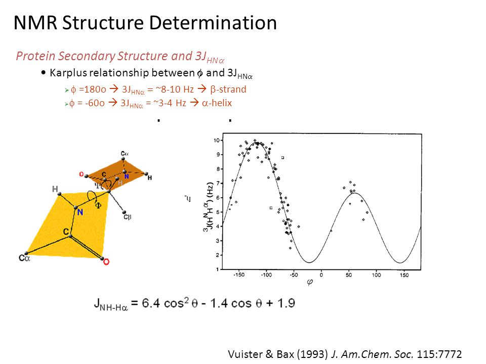 NMR Structure Determination