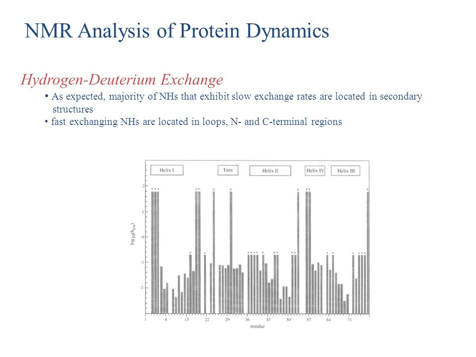 NMR Analysis of Protein Dynamics